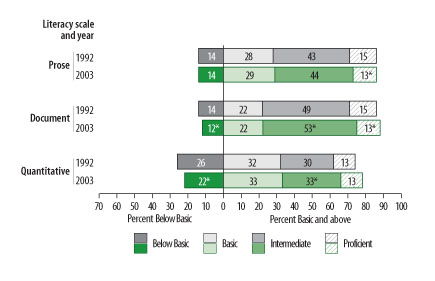 2002 national adult literacy survey